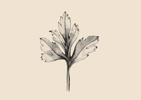 Essbare blüten wien